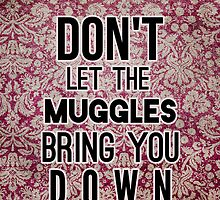 Don't Let The Muggles by Alyssa Clark