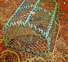 Lobster Pot at the Barriers by kalaryder