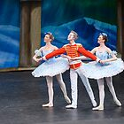 Nutcracker ballet, Monica Loughman Ballet Company at Wexford Opera House by Andrew Jones