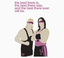 Bret and Owen Hart/WWF by Alex Mahoney