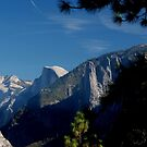 Half Dome by Loree McComb