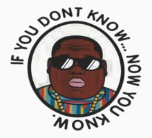 Biggie Smalls by TRilliluminati