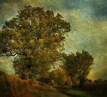 Country Road 3 by JulieCoe