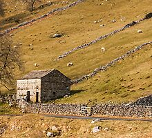 Yorkshire Dales Barn Langstrothdale by Nick Jenkins