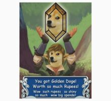 Legend of Doge by RedNumber4