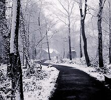 Snow Covered Footpath by liberthine01