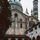 Onion dome and minarets from cloisters St Anthonies Cathedral Padua Italy 198404170008 by Fred Mitchell