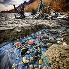 Beach brook at Scarborough Bluffs by Elena Elisseeva