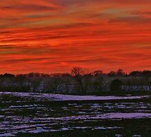Splendor in the sky by Karen  Rubeiz