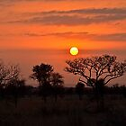 African Sunrise by Karine Radcliffe