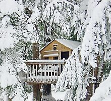 Snow Covered Tree House by AnnDixon