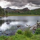 Blea Tarn Lake District by Nick Jenkins