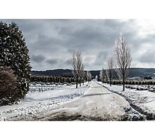 The Road to Christmas Photographic Print