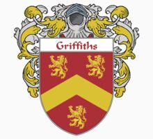 Griffiths Coat of Arms/Family Crest by William Martin