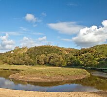 Pennard Castle below Pennard Pill by Nick Jenkins