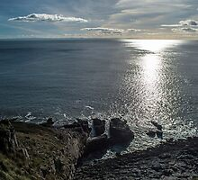 Gower Coast Near Langland Bay by Nick Jenkins