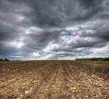 Ploughed Field by sburdan