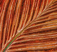 Abstract Canna Leaf by Anita Pollak