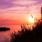 Evening Radiance _ Bishop's Head Sunset by Hope Ledebur