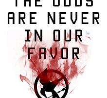 The Odds Are Never In Our Favor Catching Fire by eile