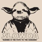 "Slowda ""Rushing is the path to the Dark Side."" by Rob Price"