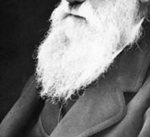 YOLO Darwin Sticker