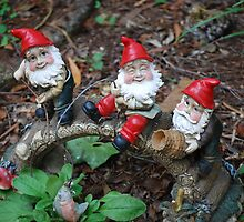 Ho, Ho and Ho by Pamnani  Photography