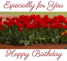 Birthday Tulips by Elaine Teague