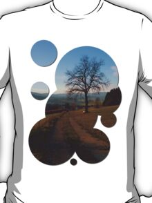 Tree, trail and indian summer evening | landscape photography T-Shirt