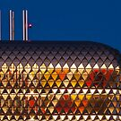 SAHMRI detail by Robert Dettman