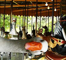 Can we go on the rides??? by Marie Van Schie