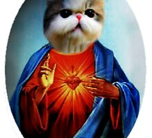 Jesus Cat by zbrewington