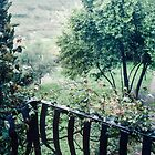 From the back balcony of  Petrarch's home Arqua Petrarcha Italy 198404170028  by Fred Mitchell