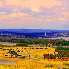 Arboretum's Canberra by Peter Holland