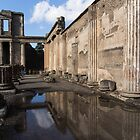 Reflecting on Pompeii by Georgia Mizuleva