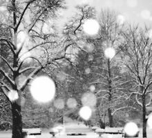 White Christmas in the Gardens by Elena J