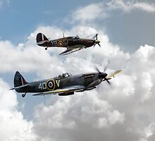 RAF Fighting Pair by James Biggadike
