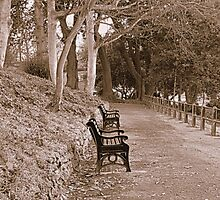 A Seat in the Park by chrissy2465