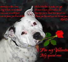 Staffie Valentine by bellecards