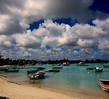 Panoramic view of Fishing boats on the sea at Grand Baie - Mauritius by Nerisha Ray Singh