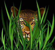 Leopard in the grass illustration by creativedesignz