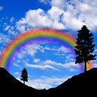 Pine trees with rainbow illustration by creativedesignz