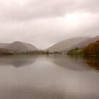 Wet November Afternoon At Grasmere  by Mike  Waldron