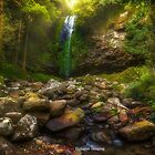Light Falls by Rodney Trenchard