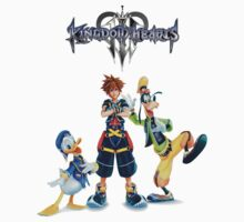 Kingdom Heart 2 by richardoh