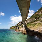 Sea Cliff Bridge by David Haworth