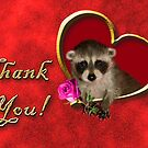 Thank You Raccoon by jkartlife