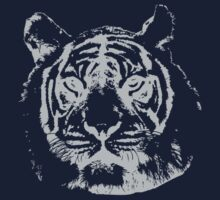 Tiger by Stock Image Folio