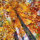 Autumn Trees In The Sky by Jean Gregory  Evans