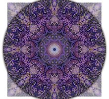 Crown Chakra Mandala 2b by haymelter